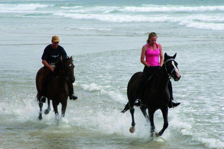 Noosa Horse Ride 1