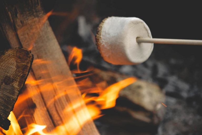 Marshmellow Roasting